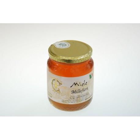 Miele Cantini vasetto da 500 g
