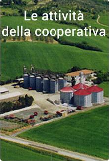 Le attività della cooperativa